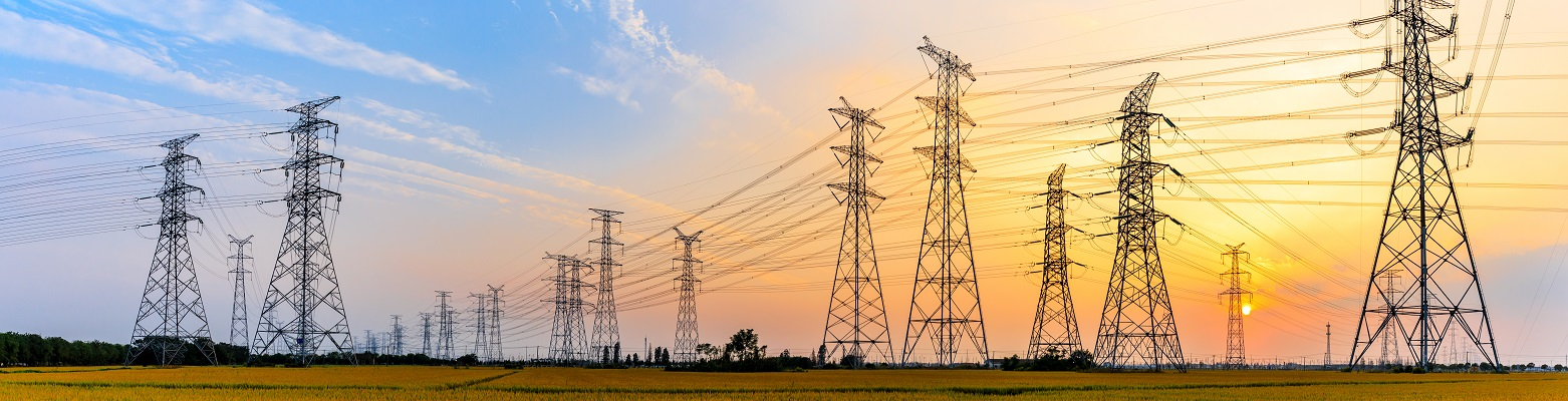 benefits of smart charging for the grid